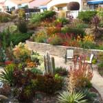 landscaping design I