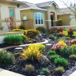 SF landscaping 2