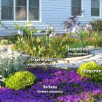 succulent landscaping design-details